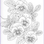 Drawing Coloring Book Luxury Photography Harmony Nature Adult Coloring Book Pg 11