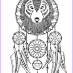 Dream Catcher Coloring Page Beautiful Gallery 134 Best Dreamcatcher Coloring Pages For Adults Images On