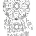 Dream Catcher Coloring Pages For Adults Beautiful Image Free Adult Coloring Page Dreamcatcher