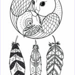 Dream Catcher Coloring Pages For Adults Inspirational Photos Owl Dreamcatcher Dreamcatchers Adult Coloring Pages
