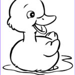 Duck Coloring Awesome Photos Cute Little Duck Coloring Page Netart