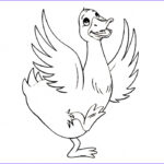 Duck Coloring Elegant Photos Free Printable Duck Coloring Pages For Kids