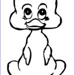 Duck Coloring Luxury Gallery Duck Coloring Pages