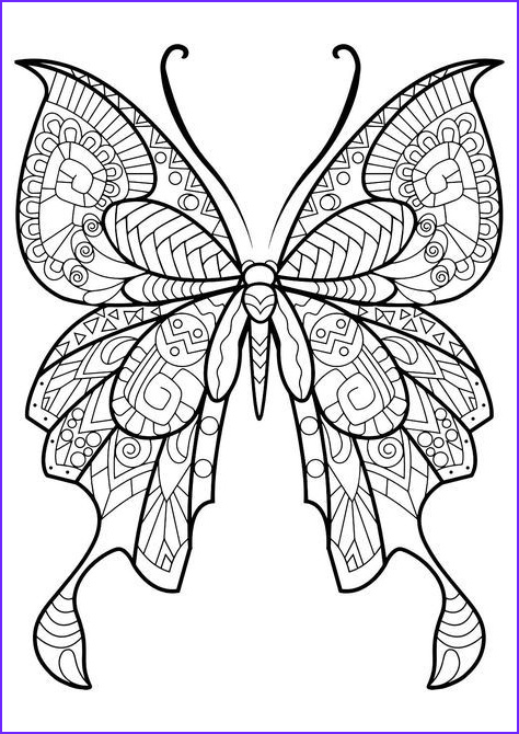 Easy Adult Coloring Books Beautiful Stock 2852 Best Images About Templates Patterns & Printables On