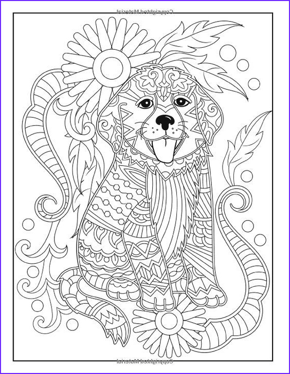 Easy Adult Coloring Books Luxury Collection 855 Best Coloring Dog Images On Pinterest