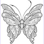 Easy Adult Coloring Pages Best Of Gallery Adult Butterfly Coloring Book