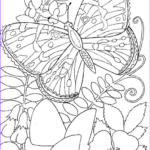 Easy Adult Coloring Pages Elegant Photos Easy Adult Coloring Pages To Pin On Pinterest
