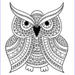 Easy Adult Coloring Pages Inspirational Images Print Adult Coloring Book 1 Big Beautiful