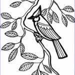 Easy Adult Coloring Pages Luxury Collection 60 Best Simple Colouring Pages Images On Pinterest