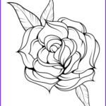 Easy Adult Coloring Pages Luxury Stock Unfold Coloring Page