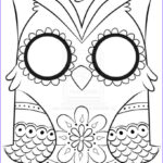 Easy Adult Coloring Pages New Stock Owl Coloring Pages For Adults