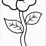 Easy Coloring Awesome Photography Coloring Pages Free Printable Preschool Coloring Pages