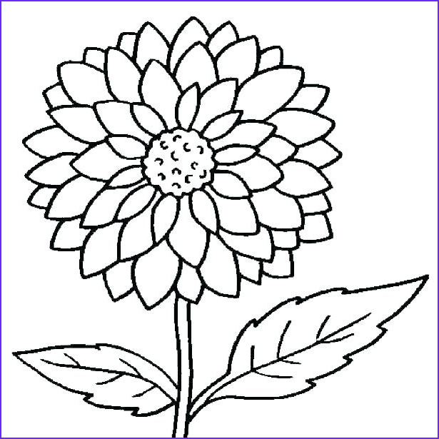 Easy Coloring Book For Adults Beautiful Photos Fantastic Flower Coloring Pages For Adults To Print