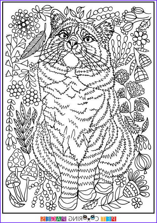 """Easy Coloring Book For Adults Beautiful Photos Free Printable Domestic Cat Coloring Page """"Čiepa"""