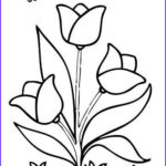 Easy Coloring Book New Photos Easy Flower Coloring Pages