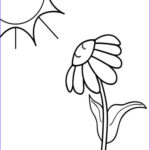 Easy Coloring Pages Awesome Photos Easy Coloring Pages Coloringcks