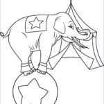 Elephant Coloring Pages New Photos Transmissionpress Circus Elephant Coloring Pages