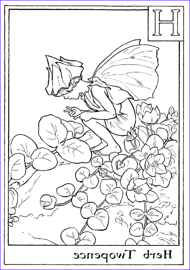 Fairy Coloring Books Luxury Photography 25 Best Ideas About Fairy Coloring Pages On Pinterest