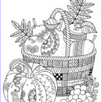 Fall Adult Coloring Pages Beautiful Image Best 25 Coloring Ideas On Pinterest