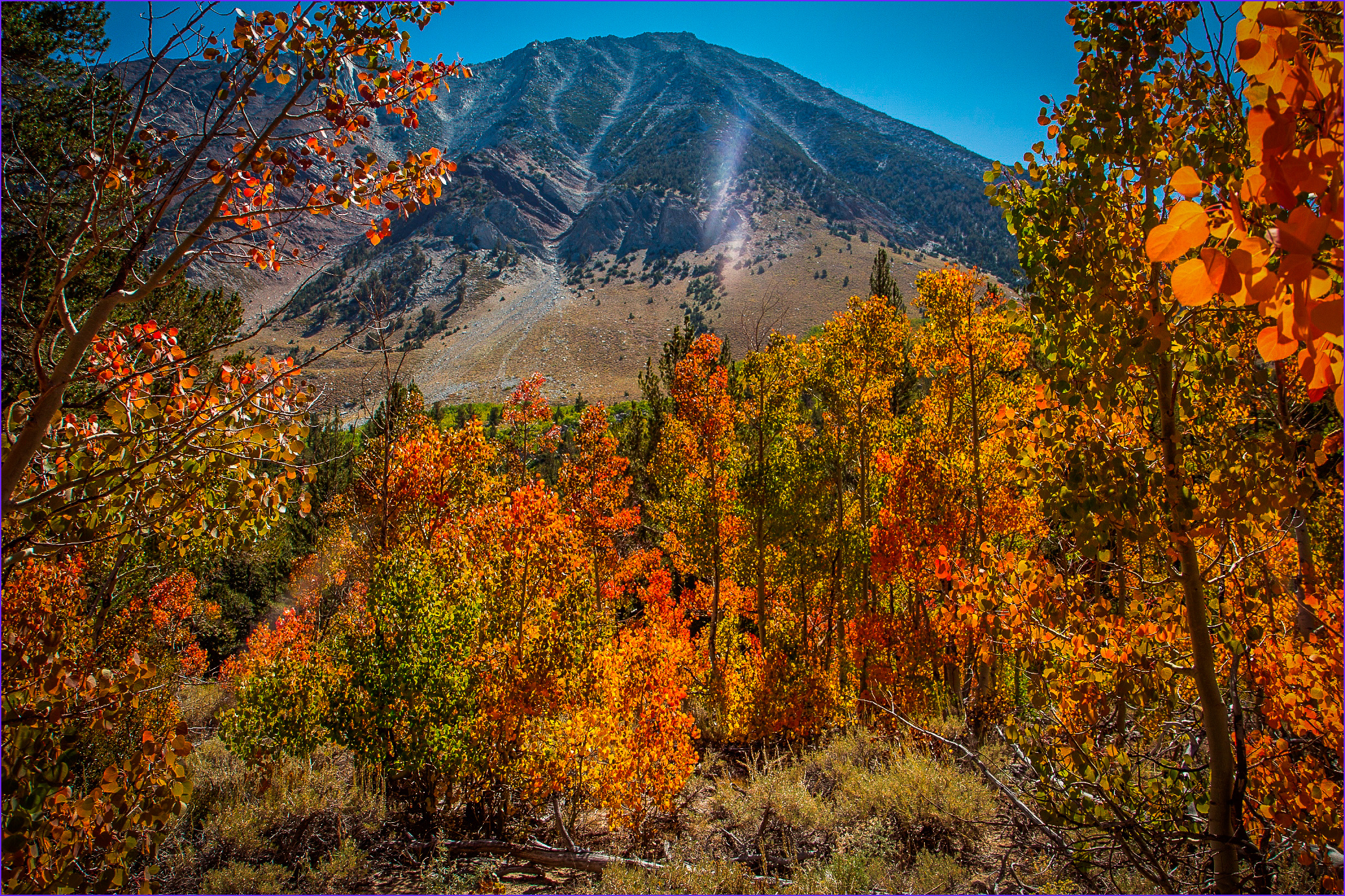 Fall Coloring Beautiful Photography Mono County From Just Starting to Near Peak – California