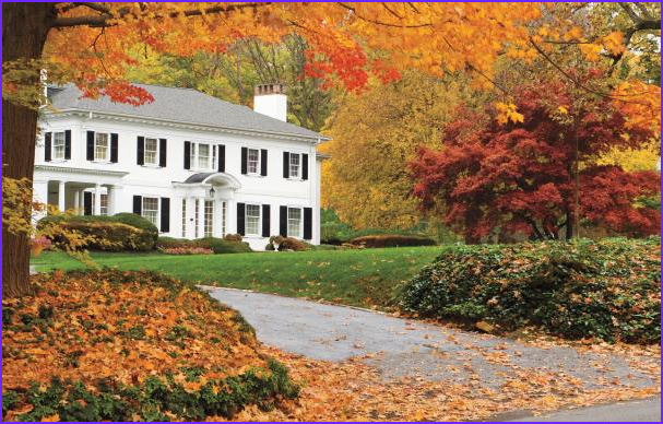 Fall Coloring Inspirational Photos 10 Best Trees and Shrubs for Fall Color