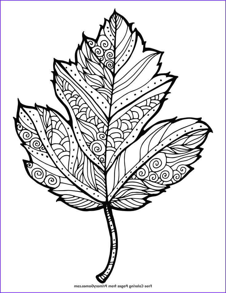 Fall Coloring Pages Adults New Stock Fall Coloring Pages Ebook Maple Leaf Fall