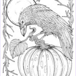Fall Coloring Pages For Adults Awesome Gallery Fall Crow Digital Coloring Page Thanksgiving Harvest Adult