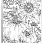 Fall Coloring Pages For Adults Beautiful Image Fall Flowers And Pumpkins Digital Coloring Page