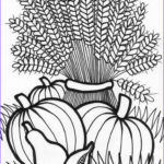 Fall Coloring Pages For Adults Best Of Collection 102 Best Coloring Pages Images On Pinterest