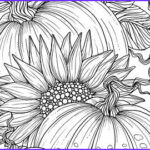 Fall Coloring Pages For Adults Best Of Stock 5 Pages Beachy Escape Coloring Digital Color Pages Shells
