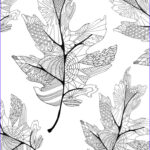 Fall Coloring Pages For Adults Inspirational Collection 17 Best Images About ♣adult Colouring Trees Leaves