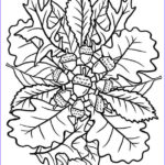 Fall Coloring Pages For Adults Inspirational Stock 297 Best Coloring Autumn & Thanksgiving Images On