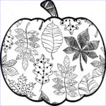 Fall Coloring Pages For Adults Luxury Photos Pin By Mandy Stanton Buell On Cut It