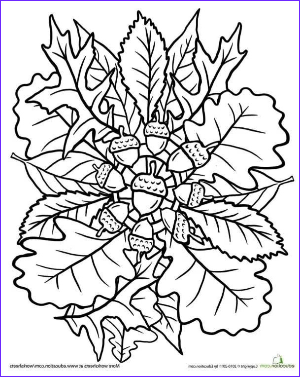 Fall Leaves Coloring Pages Elegant Gallery Oak Tree Coloring Page Mandala