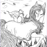 Fantasy Adult Coloring Pages Awesome Photography Fantasy Cat With Horse – S Mac S Place To Be