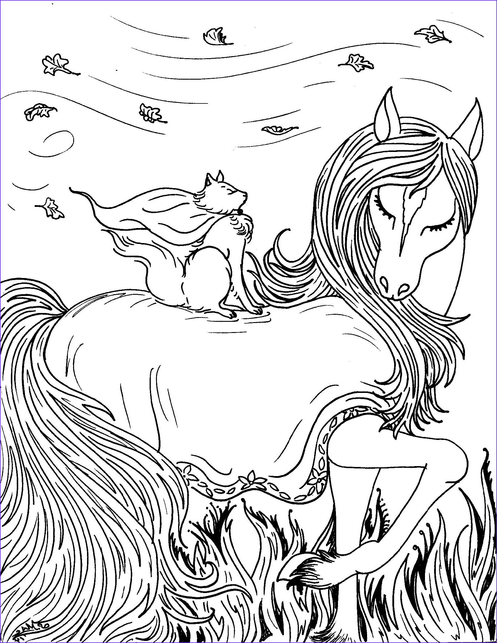 fantasy cat with horse