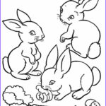 Farm Animal Coloring Pages Beautiful Collection Farm Animal Coloring Pages Bestofcoloring