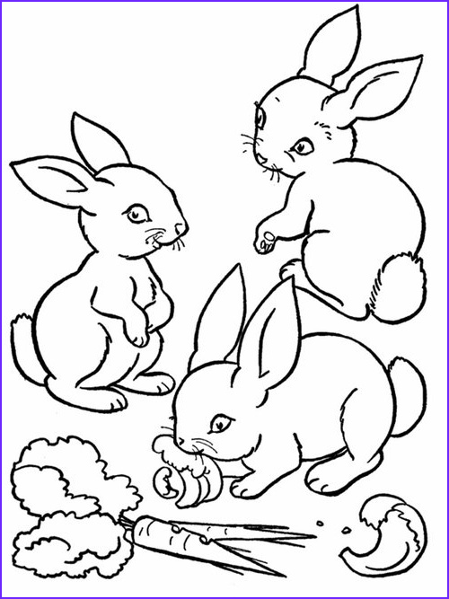baby farm animals coloring pages for