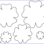 Felt Coloring Pages Beautiful Photography Flower Template Printable Spring Pinterest