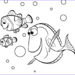 Finding Dory Coloring Book Inspirational Image 17 Best Images About Coloring Pages On Pinterest
