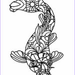 Fish Coloring Beautiful Photos Free Printable Fish Coloring Pages for Kids