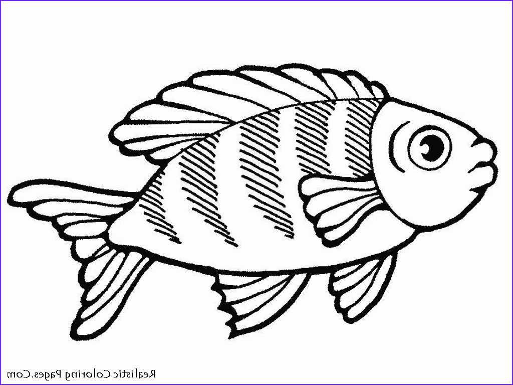 Fish Coloring Pages for Adults Awesome Photos Graphing Ocean Animals Auto Electrical Wiring Diagram