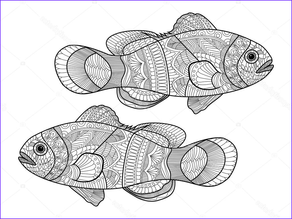 stock illustration clown fish coloring book for