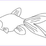 Fish Coloring Pages For Adults Beautiful Gallery Of Goldfish Coloring Pages Rockcafe