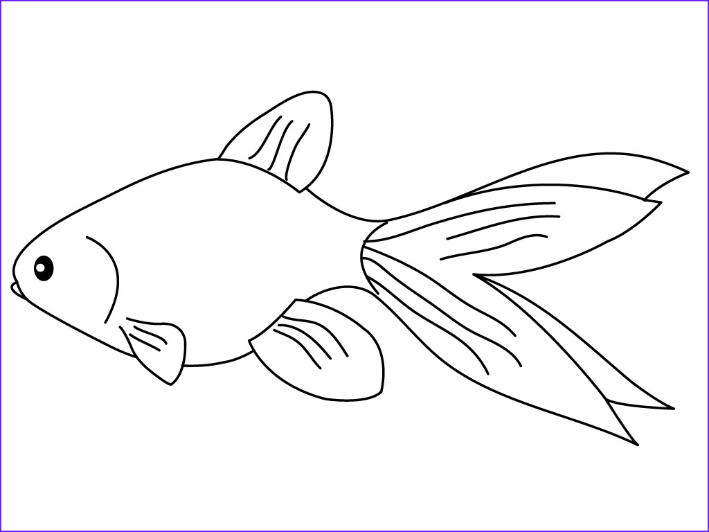 goldfish coloring pages 676f6c