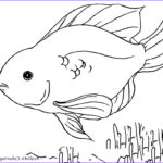 Fish Coloring Pages For Adults Best Of Collection Tropical Fish Coloring Page Sketch Coloring Page