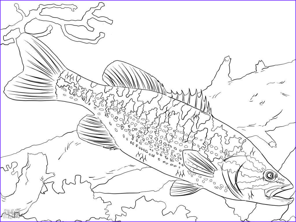 pledge allegiance coloring pages images