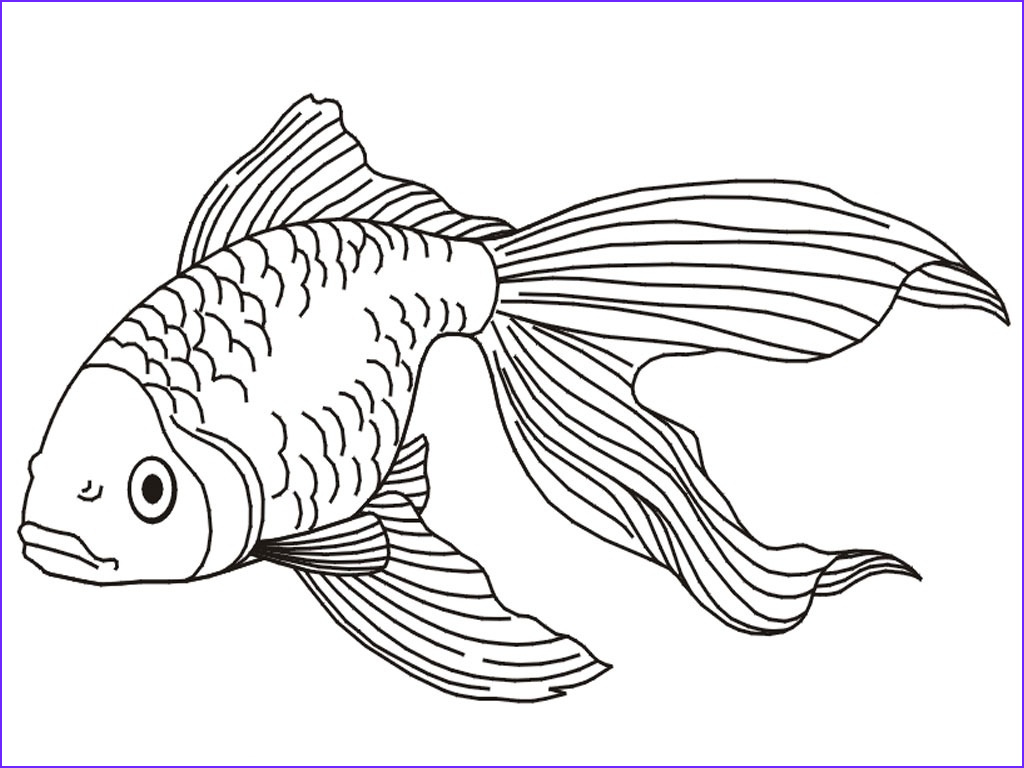 Fish Coloring Pages for Adults Inspirational Photos Explore astronomy Using Your Esrt Auto Electrical Wiring D