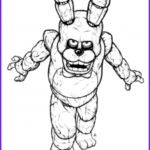 Five Nights At Freddy's Coloring Book Beautiful Gallery How To Draw Bonnie The Bunny Five Nights At Freddys Step