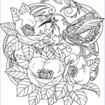 Flower Coloring Book Pages Beautiful Photos Hummingbird In Flowers Coloring Page